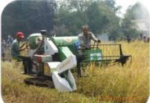 Peranan Teknologi Pertanian