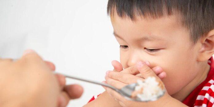 anak 1 tahun susah makan